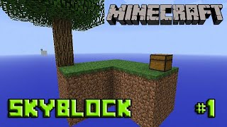 [Minecraft - Skyblock] #1 Cobblestone e I Love Saplings ♥