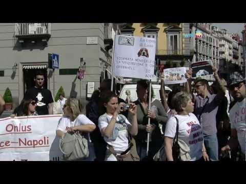 In piazza contro la vivisezione