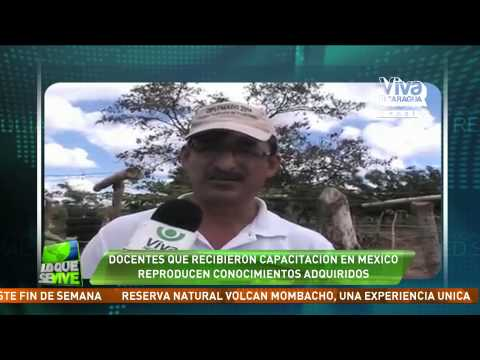 Docentes que recibieron capacitación en México reproducen conocimientos adquiridos