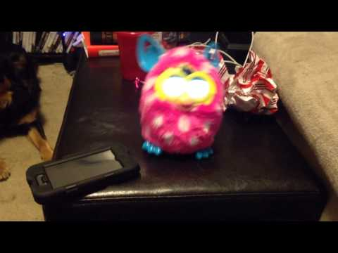 Furby Boom Loves The Fox