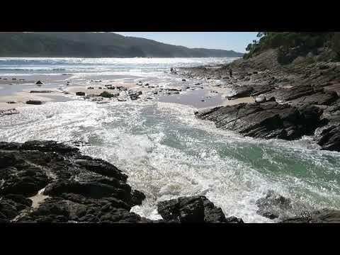 Seal Rocks in Australien