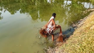 Net Fishing | Catching Fish With Cast Net | Net Fishing in the village (Part-116)