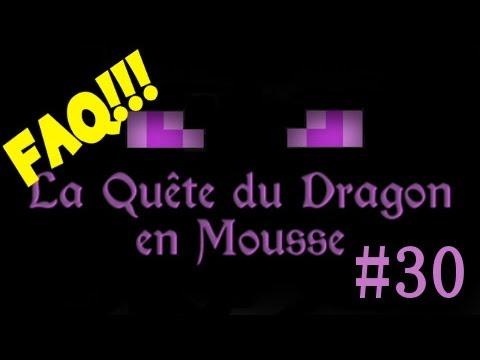 La Quête du Dragon en Mousse - 30 - FAQ !!! Merci à JCVD pour sa participation.