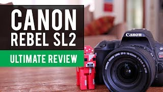 Canon SL2 EOS Rebel Camera (200d): Ultimate Review