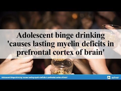 Adolescent binge drinking 'causes lasting myelin deficits in prefrontal cortex of brain'