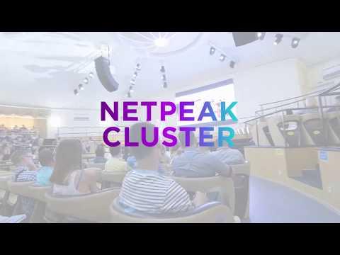 Что такое Netpeak Cluster и как он поможет интернет-предпринимателям?