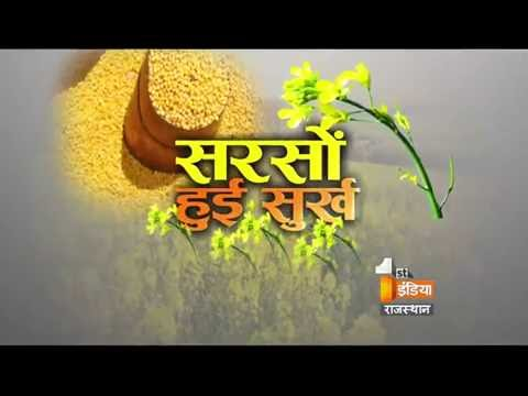 Production of Mustard   Bajar First   Part - 1   First India News