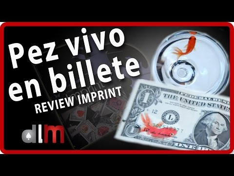 Pez dentro de un billete WTF?   Review Imprint by Jason Yu