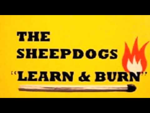 The Sheepdogs - I Suddenly