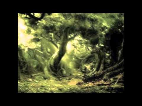 Thomas Bergersen- Gift of Life