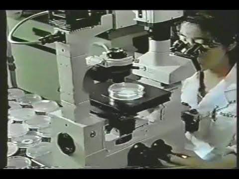 Microorganismos y Materia Orgánica 01.wmv