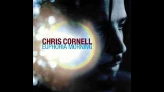 Watch Chris Cornell Steel Rain video