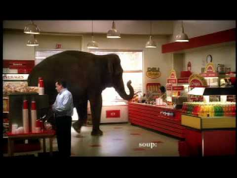 Mastercard Priceless Elephant Video