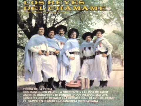 Los Reyes del Chamamé- Con sabor campesino (1981) -Disco Entero-