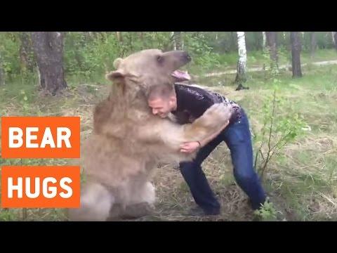 巨大なクマと熱い抱擁・・・かと思いきや相撲を挑んでみた?!