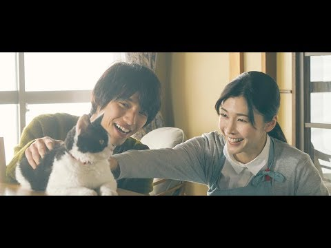ワルツな映画たち.Kis-My-Ft2北川さんが「猫」を好演!「トラさん〜僕が猫になったワケ〜」