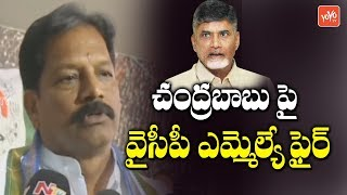 YSRCP MLA Kona Raghupathi fires on Chandrababu | YS Jagan | AP News