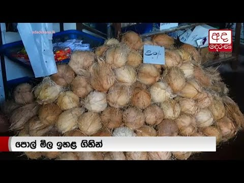 a coconut should be |eng