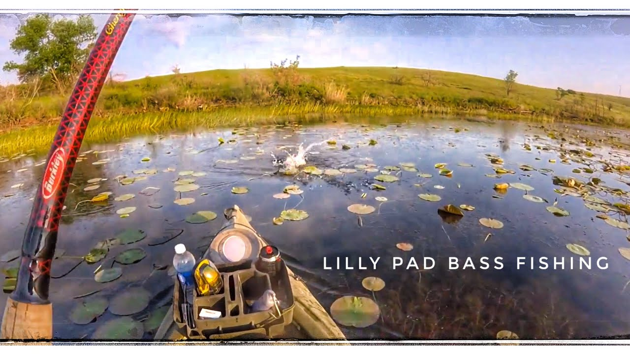 Bass fishing 2016 in lily pads south west oklahoma for Fishing videos 2016