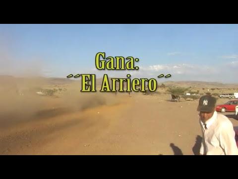 Carreras de Caballos en el Molino Zacatecas