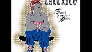 Watch Calexico Not Even Stevie Nicks video
