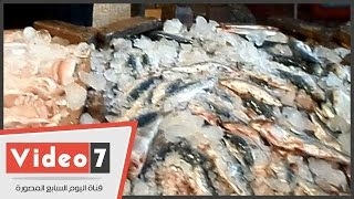 بالفيديو.. بائع سمك : سعر كيلو السمك 12 جنيه والأقبال كبير