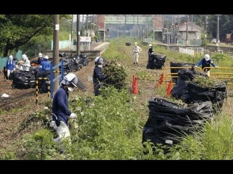 Nuclear Watch: Japan Fukushima evacuees oppose nuclear waste facilities (06/08/2014)
