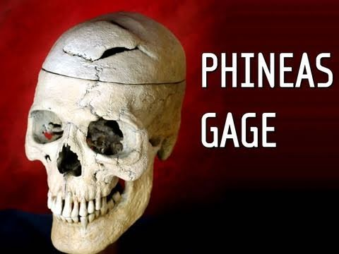 Hank Green - Phineas Gage