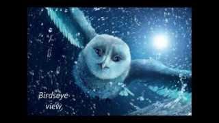 Owl City To The Sky