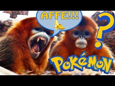 Wenn Tiere wie Pokemon sprechen würden