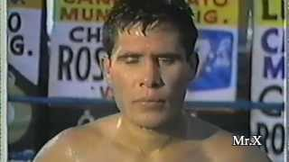 Julio Cesar Chavez sr Highlights