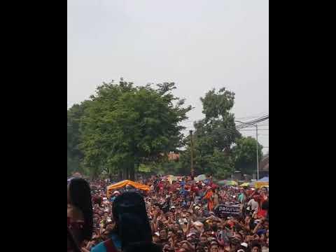 (SNP JOMBANG) New Pallapa ditinggal rabi live ripai tembelang jombang