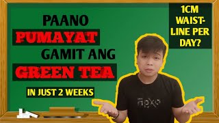 PAANO AKO PUMAYAT GAMIT ANG GREEN TEA | 2 WEEKS | HEALTH BENEFITS OF GREEN TEA