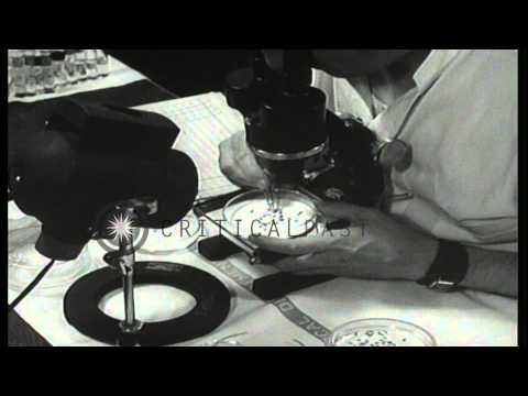 News Endoscope Repair Technician
