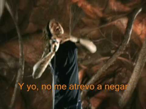 Korn alive lyrics