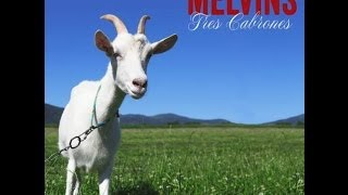 "The Melvins ""Dr Mule"""