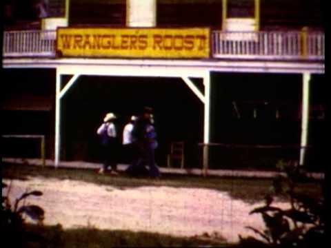Jerry Jeff Walker - Redneck Mother