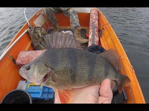 рыбалка весной на силикон
