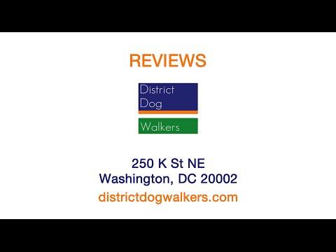 District Dog Walkers -  REVIEWS - Washington, DC Dog Walkers Reviews