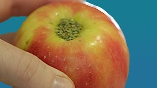 9 Weed Hacks You Never Knew You Needed