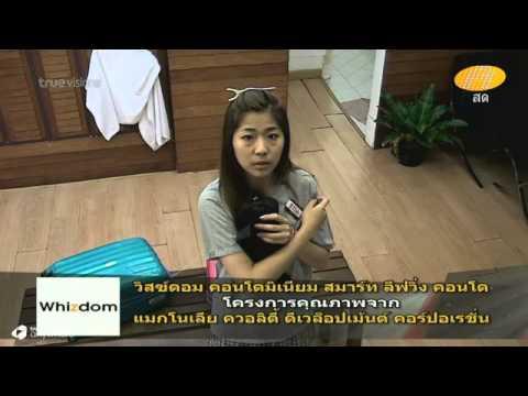 Nam V11 AF11 : Wk10(260914) มาดูเอมหน่อย