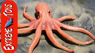 "The Octopus Stow Away! Mysterious Squid Toy Sea Creature on the Beach. ""Part 1"""