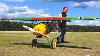 RC MODEL SCALE AIRPLANE FOKKER E5 D8 (E.V D.VIII) IN DETAIL AND FLIGHT DEMO!!