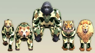 Army Color animals finger family song for Kids,Gorilla,Lion,Tiger,cheetha,bear,Arcus N Media Kidz
