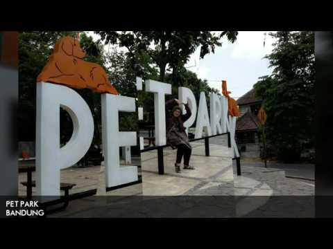 download lagu Jalan-Jalan, Yuk! - PET PARK gratis