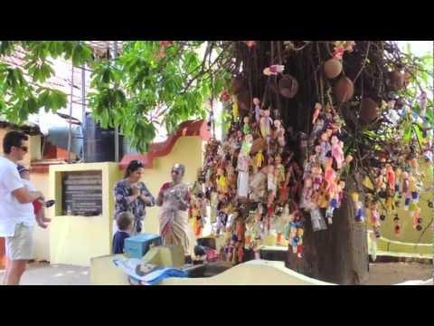 India El árbol de la fertilidad en Kerala