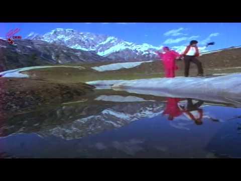 Back 2 Back Songs || Donga Mogudu Movie || Chiranjeevi, Radhika, Bhanu Priya, Madhavi
