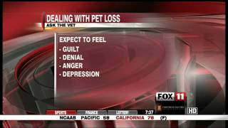 "Coping with Pet Loss with Dr. Joel Conn on KCOY CBS 12 ""Ask the Vet"""
