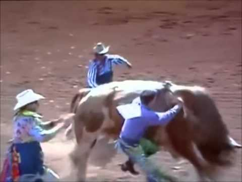 rancho de mafafa misantla y toros de montas