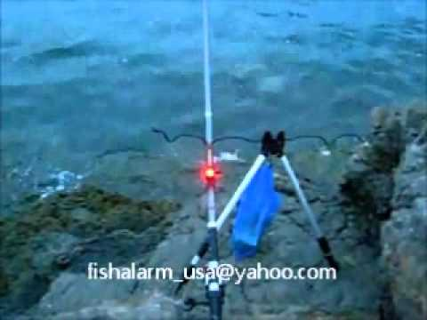 ELECTRONIC FISH BITE ALARM with LED & Magnetic Trigger